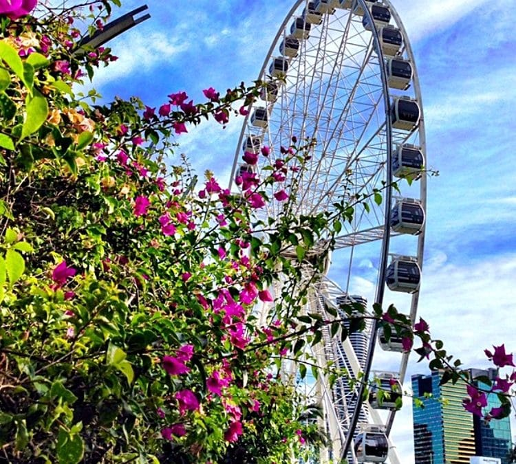 Favourite things to do at South Bank this April