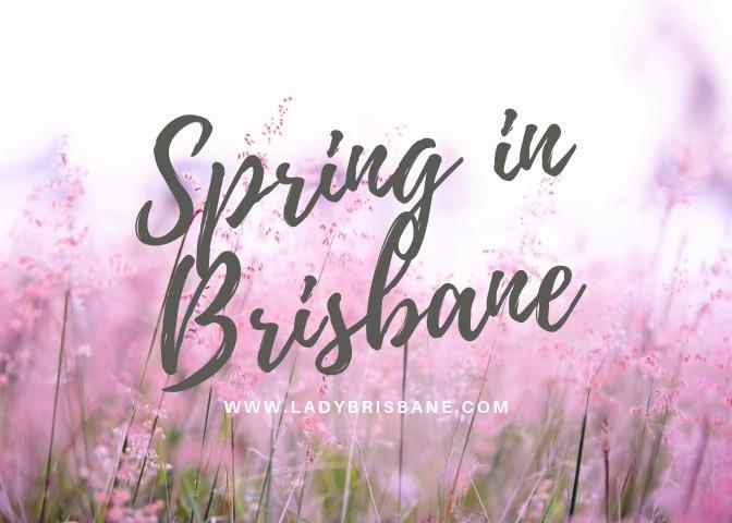 Lady+Brisbane+Spring+in+Brisbane