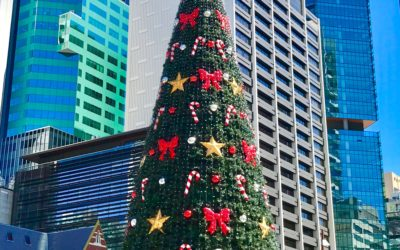 Celebrate Christmas in Brisbane