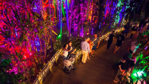 The Enchanted Garden at RSP