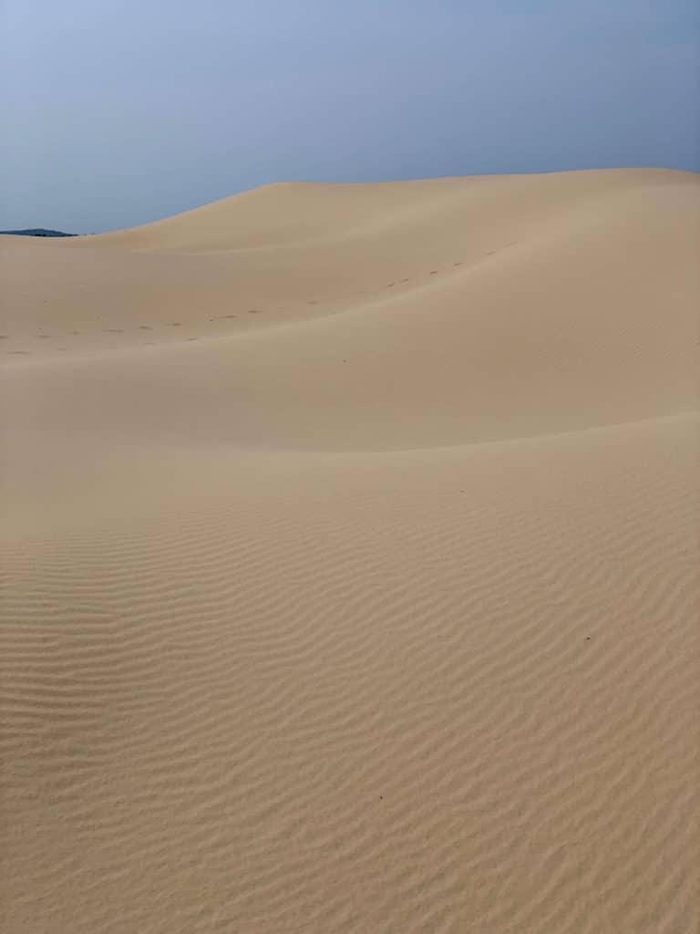 Great Southern Lady Brisbane Stockton Sand Dune 2