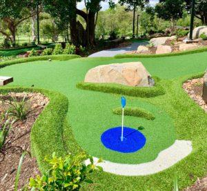 Garden Golf Putt Putt