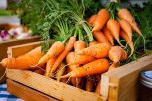 Carrots Unsplash