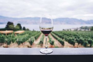 Sirromet Wines Brisbane