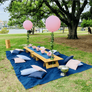 Navy & Blush picnic package
