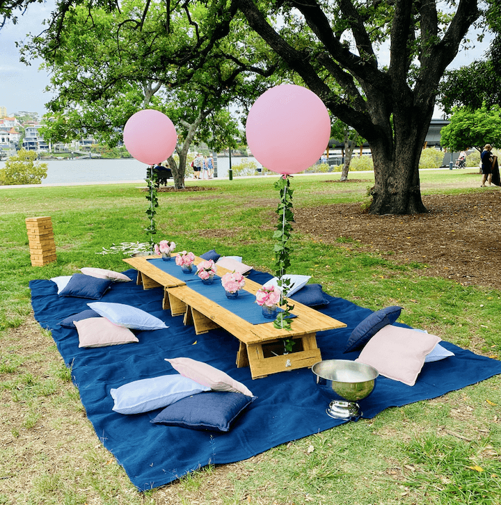 Navy and Blush picnic package