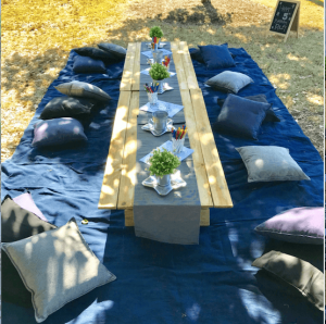 Mr Vintage picnic package