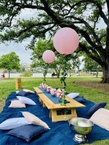 Navy & Blush picnic
