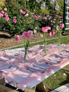 Pretty in Pink picnic