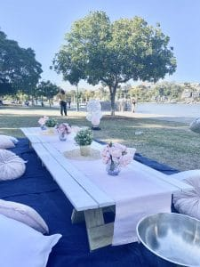 Navy & Blush picnic