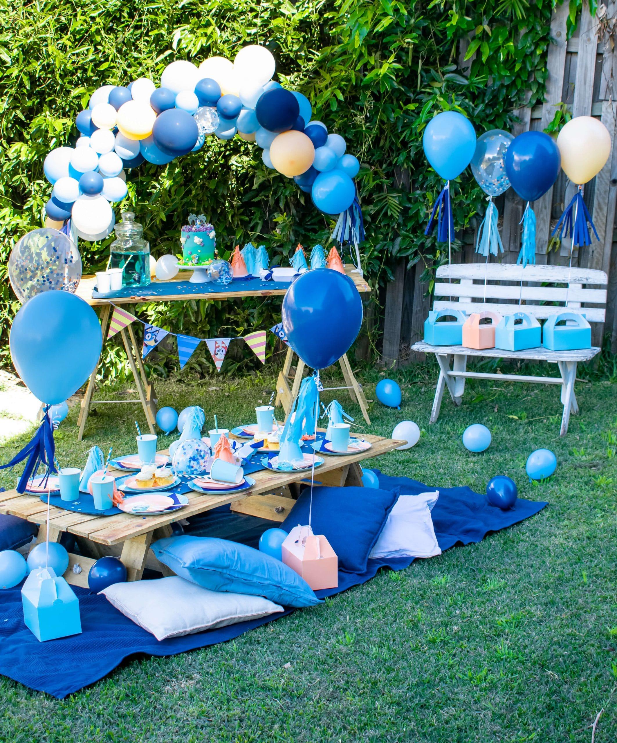 Bluey picnic party