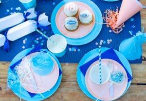 Bluey picnic