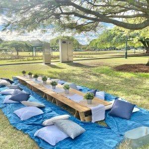 Group picnics