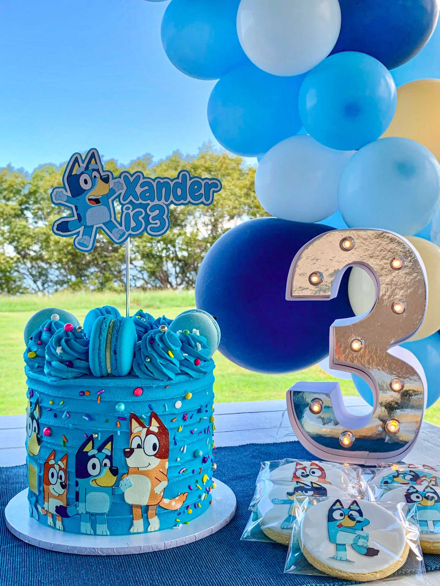 Bluey Cake Brisbane