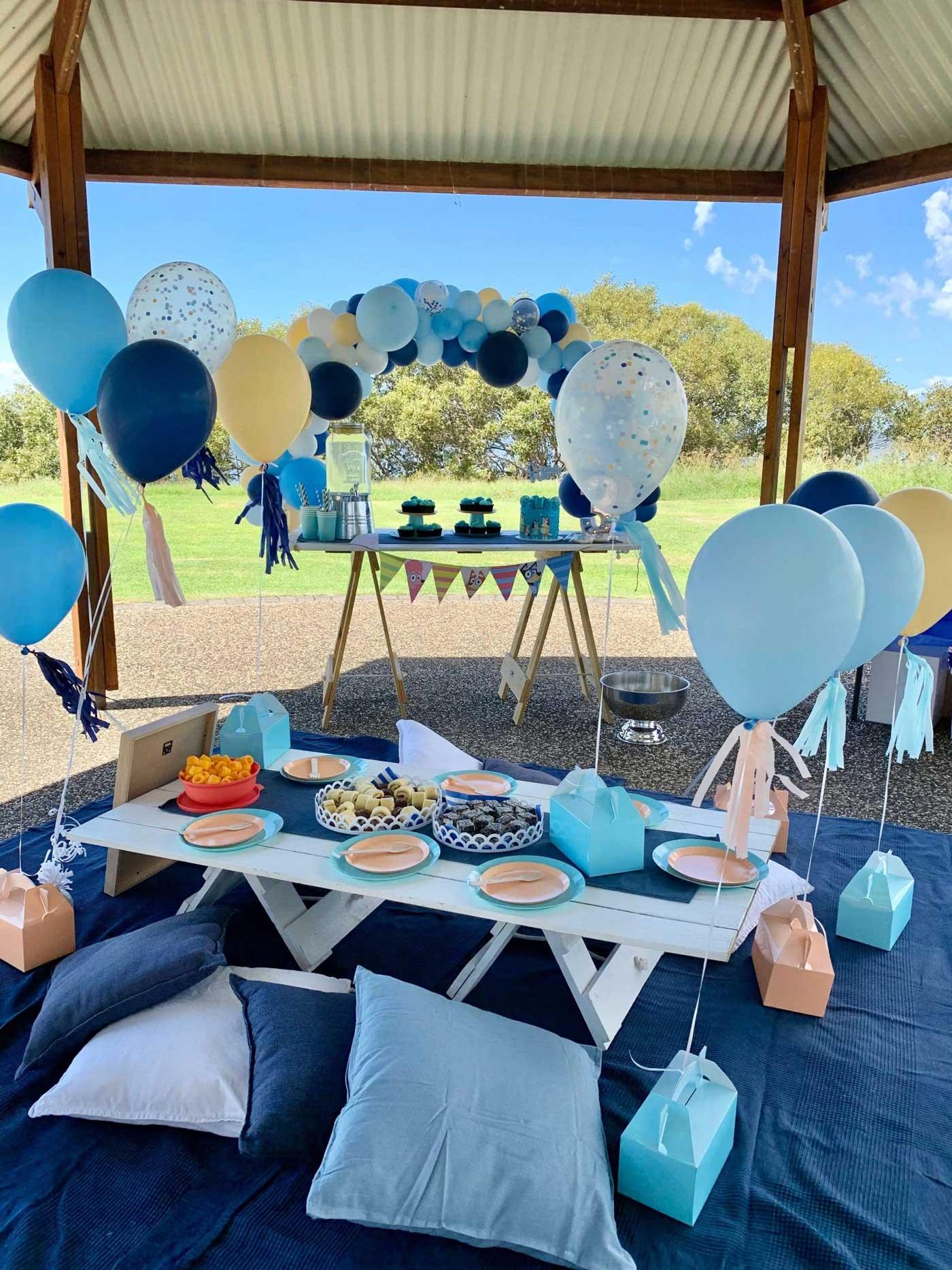 Bluey Picnic Set Up Brisbane